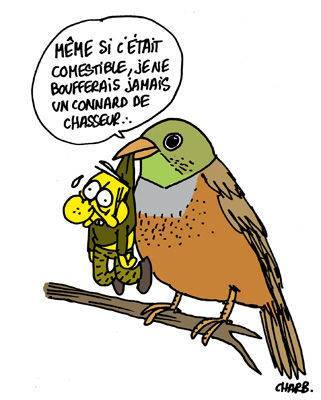 CH3 - Chasseur