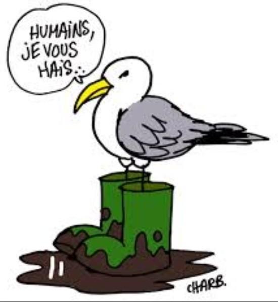 humains-je-vous-hais-charb