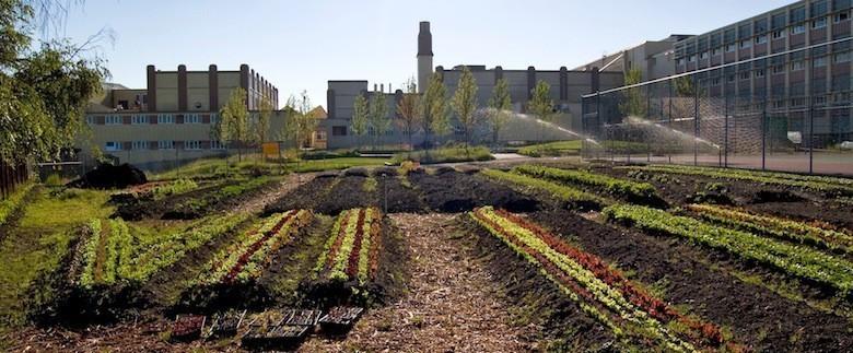 13_vancouver-compost-garden