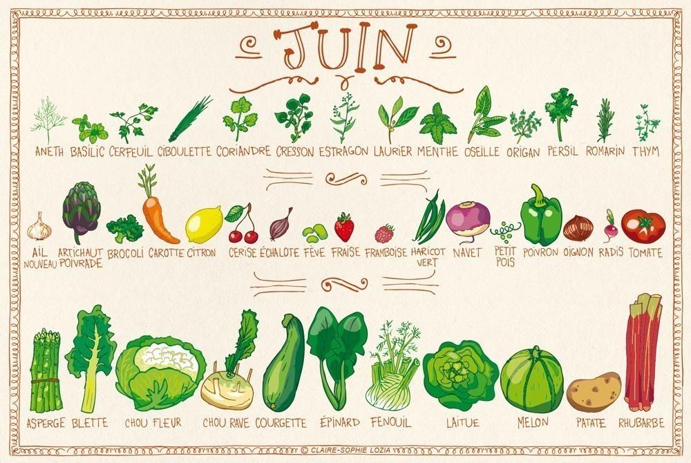 Assez Voici le calendrier des fruits & légumes de Juillet UW99