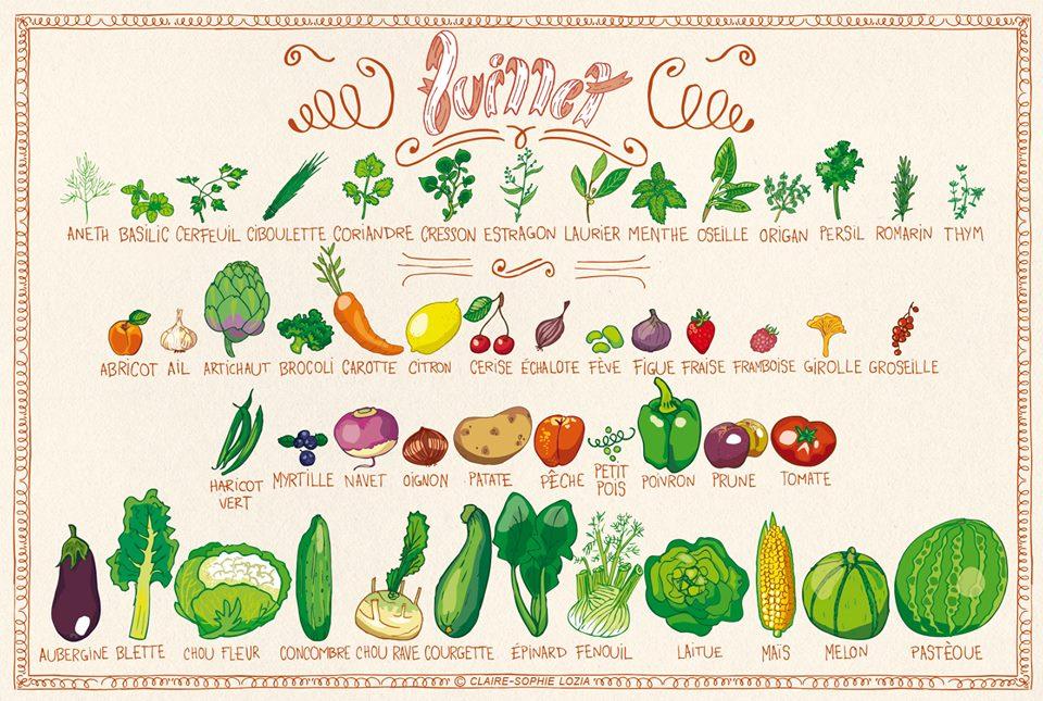"""Résultat de recherche d'images pour """"fruits et legumes juillet"""""""