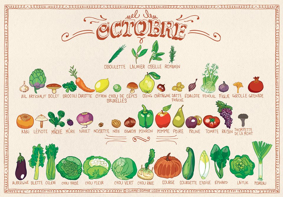voici le calendrier des fruits l gumes d 39 octobre. Black Bedroom Furniture Sets. Home Design Ideas