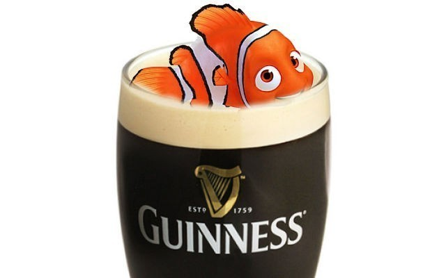guinness-fish-bladder-nemo