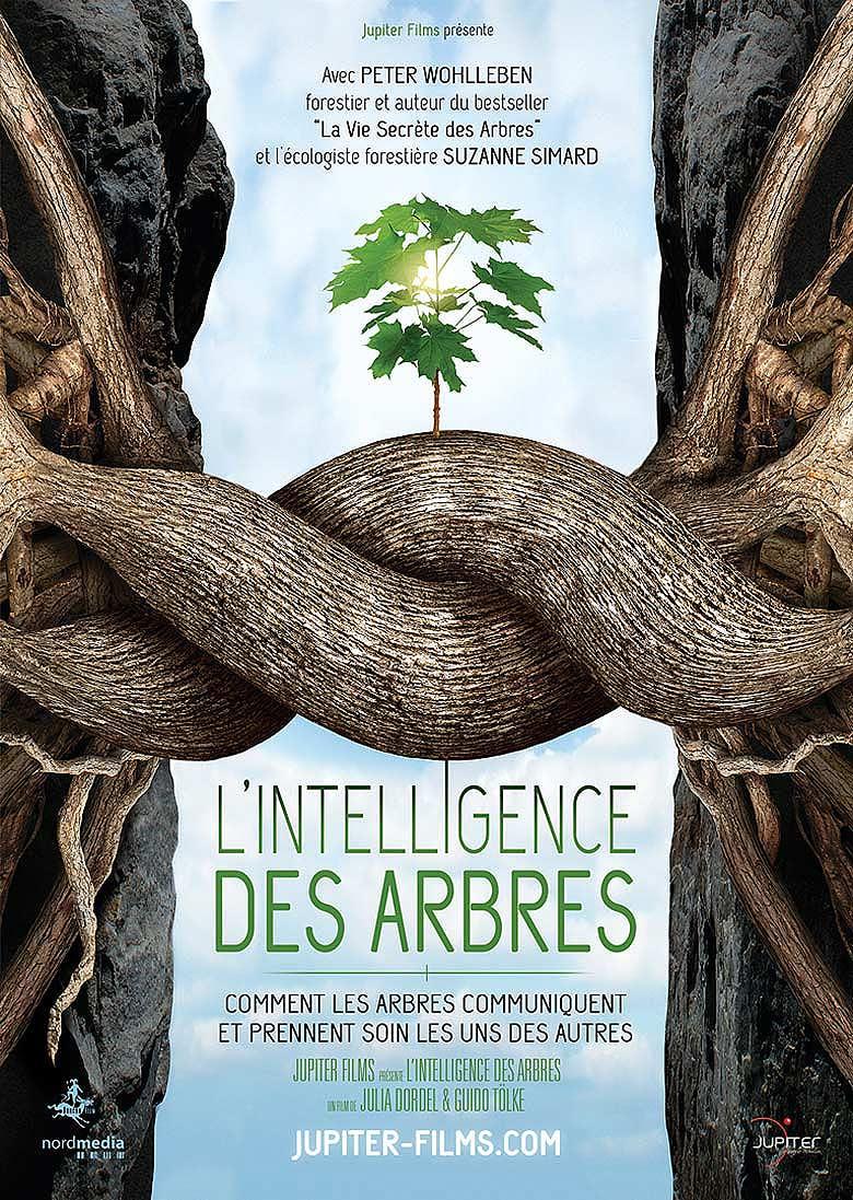 TREES_AFFICHE_A4_NEUTRE.jpg