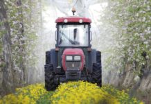 Des belges lancent un nouveau pesticide biologique - Arreter de fumer progressivement ou d un seul coup ...