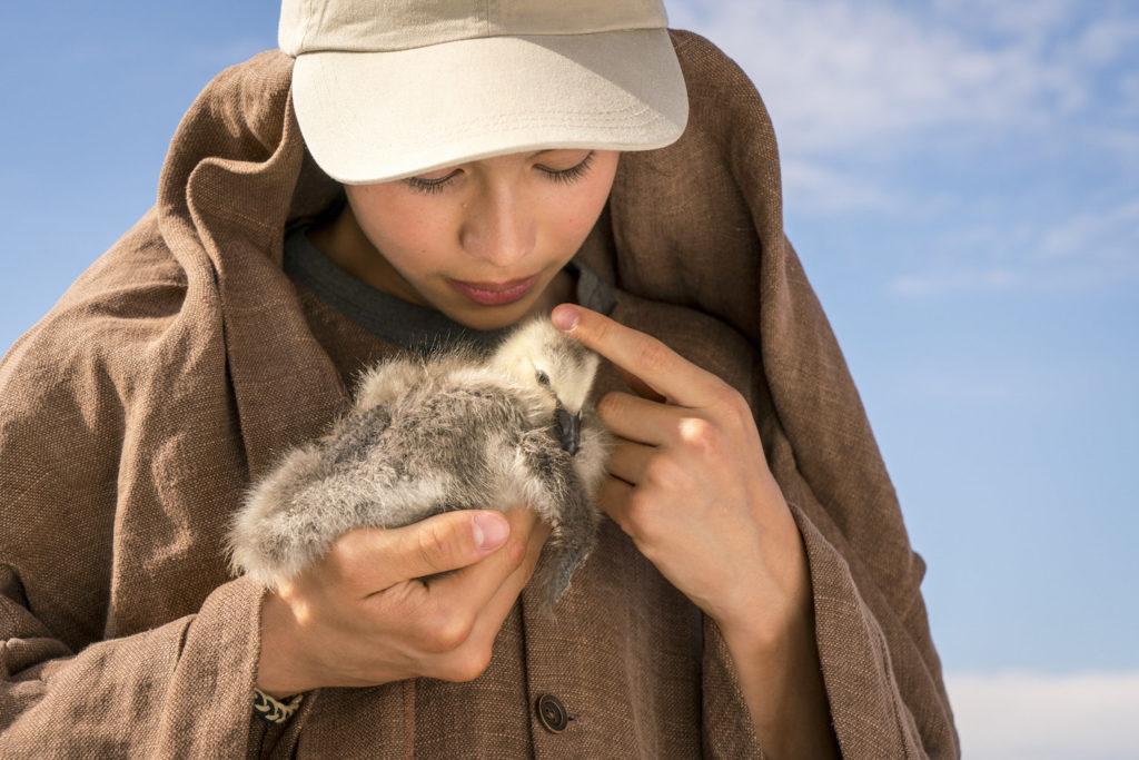 Donne-moi des ailes : un voyage extraordinaire pour sauver des oies sauvages ! By MrMondialisation Pp20180612dma_1117-1024x683