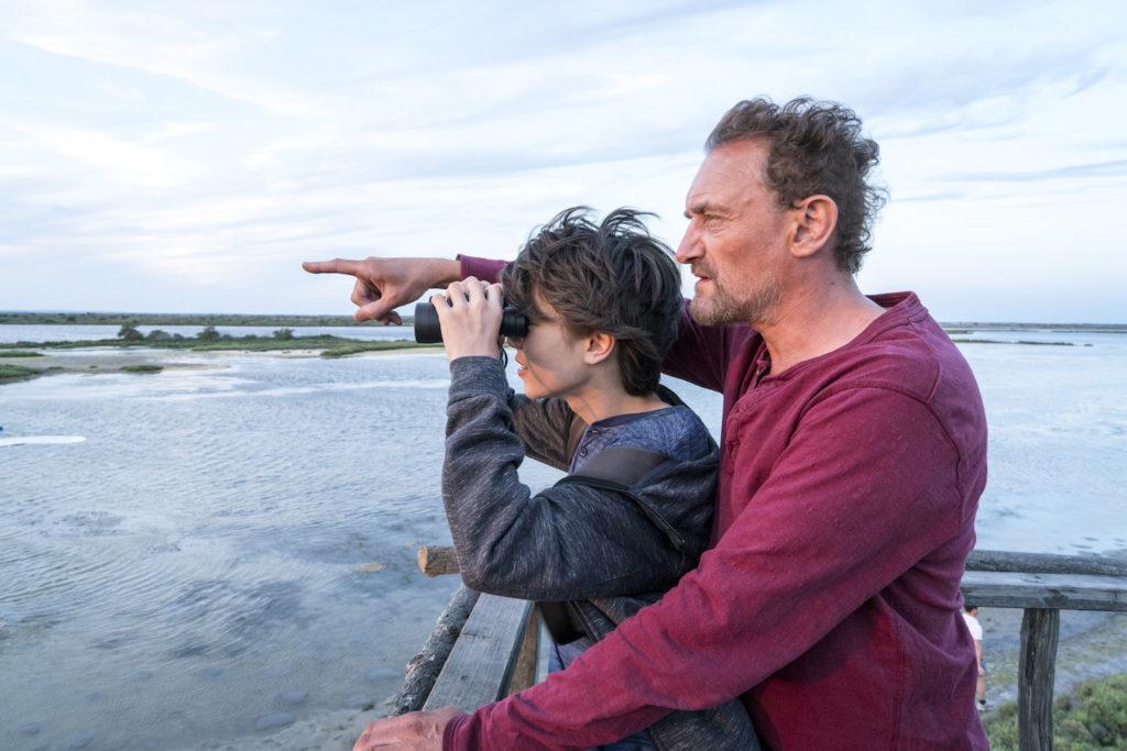 Donne-moi des ailes : un voyage extraordinaire pour sauver des oies sauvages ! By MrMondialisation Pp20180614dma_1290-1024x683