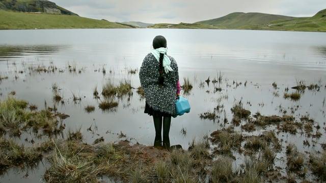Où en est le mouvement mondial des Droits de la Nature ? Entre espoirs