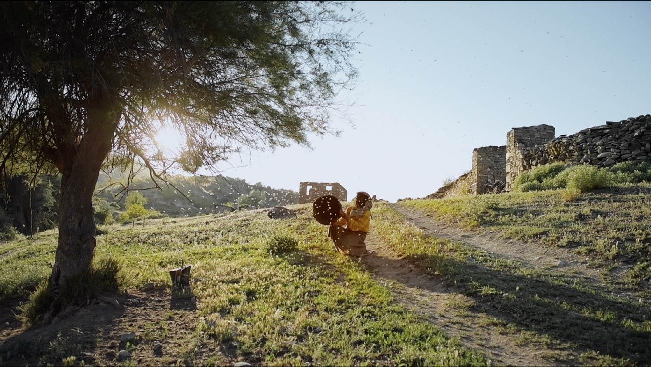 Honeyland : récit de l'incroyable Femme aux Abeilles ! (vidéo sur Bidfoly.com) By MrMondialisation Honeyland1
