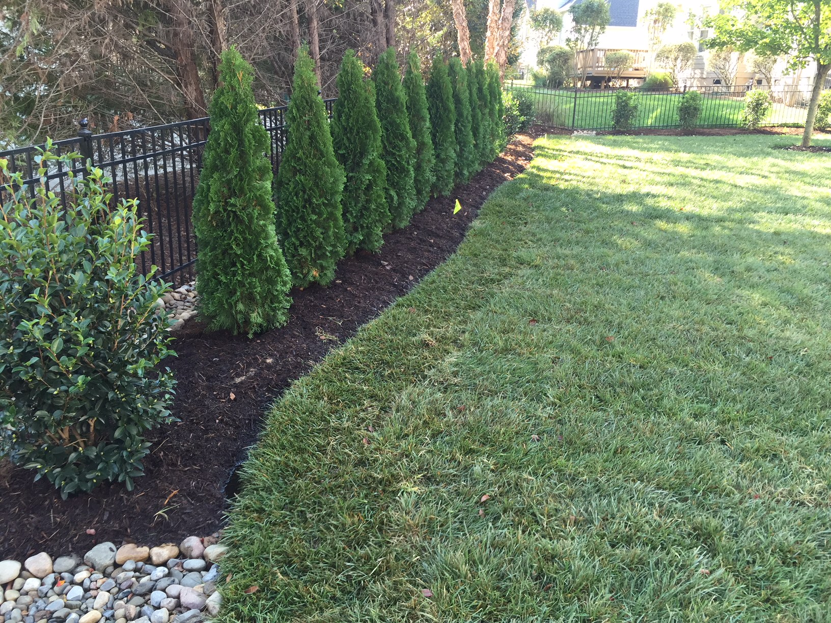 privacy landscaping - . outdoor