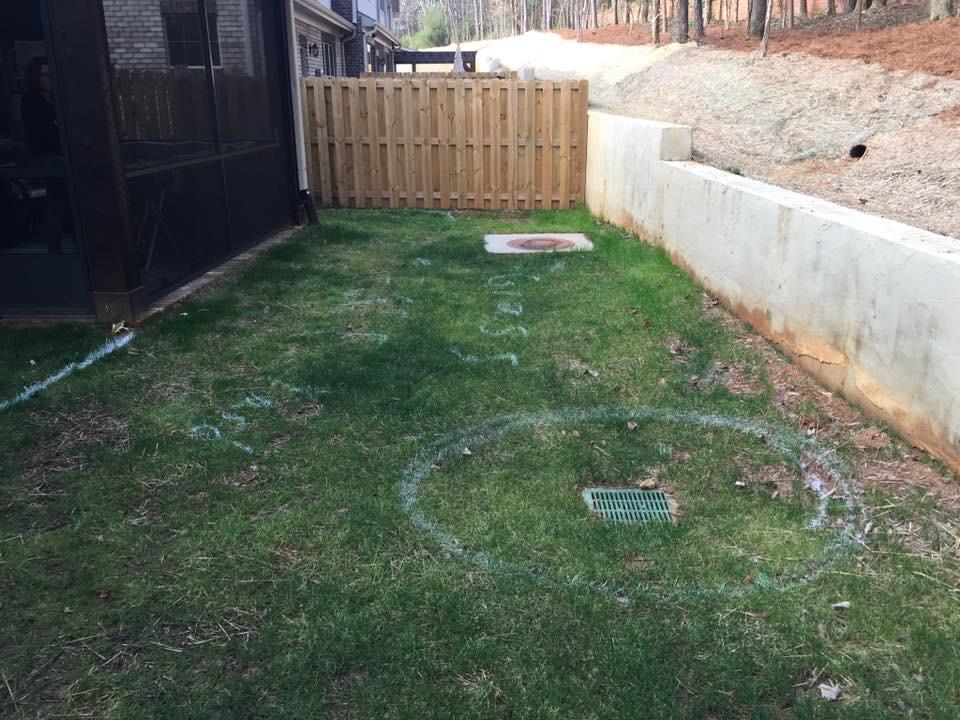 Maintenance Free Backyard - 4