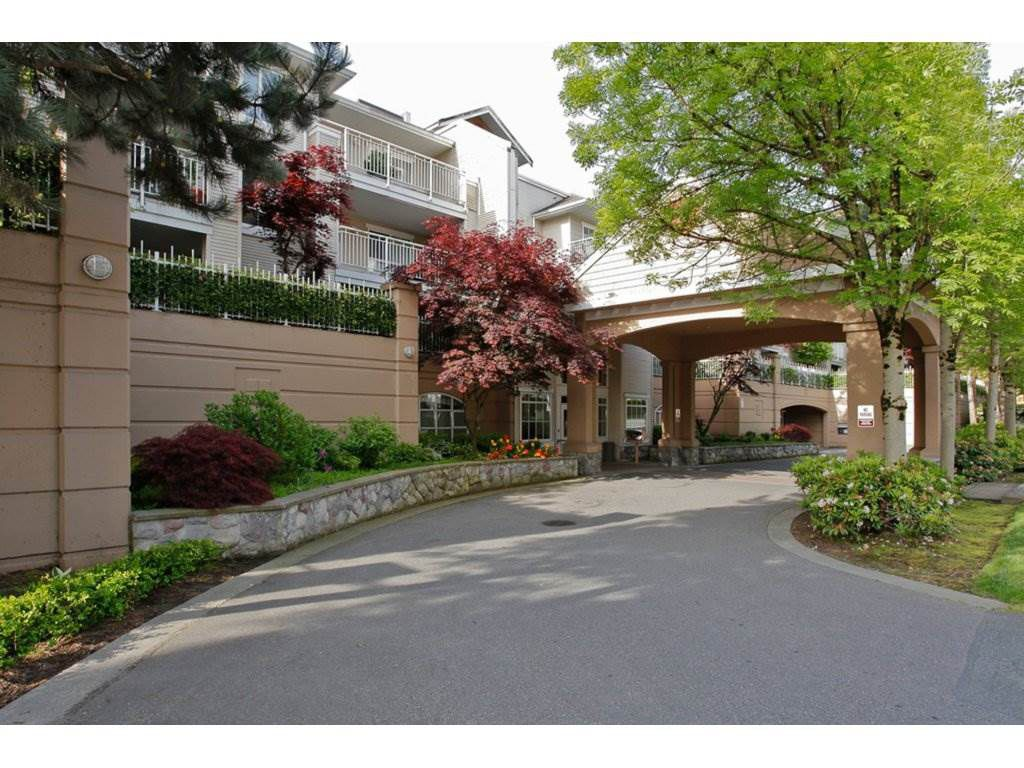 """Main Photo: 123 19750 64 Avenue in Langley: Willoughby Heights Condo for sale in """"The Davenport"""" : MLS®# R2144269"""