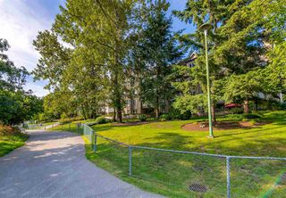 "Photo 27: 423 6707 SOUTHPOINT Drive in Burnaby: South Slope Condo for sale in ""MISSION WOODS"" (Burnaby South)  : MLS®# R2470852"
