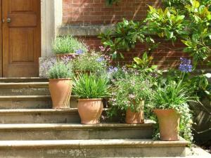 Gardening jobs for December: Wash pots