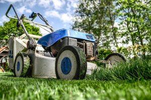 Gardening jobs: Service/sharpen mower