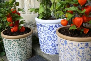 Container Gardening: Blue and white patterned plant pots