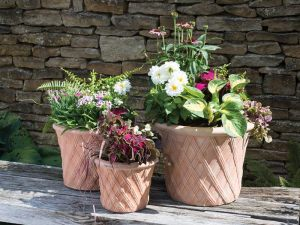 Container Gardening: Plant pots at different heights