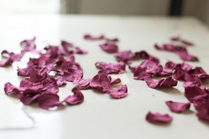 The Paper Flowers That Are Blowing Our Minds At The Mr Plant Geek Hq