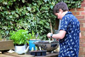 From Seed to Scoff
