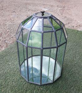 Vintage style terrarium