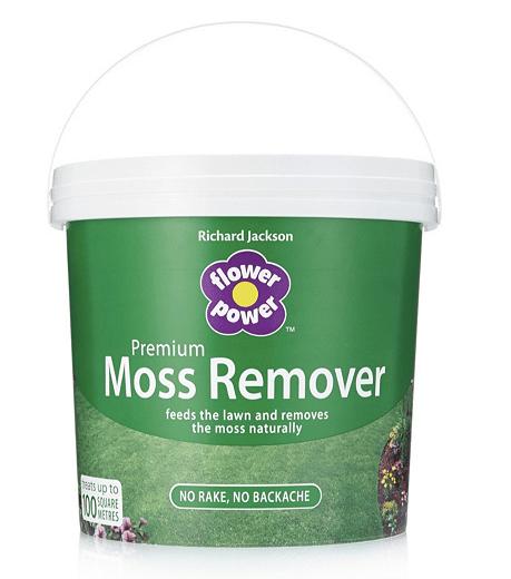 Richard Jackson Moss Remover