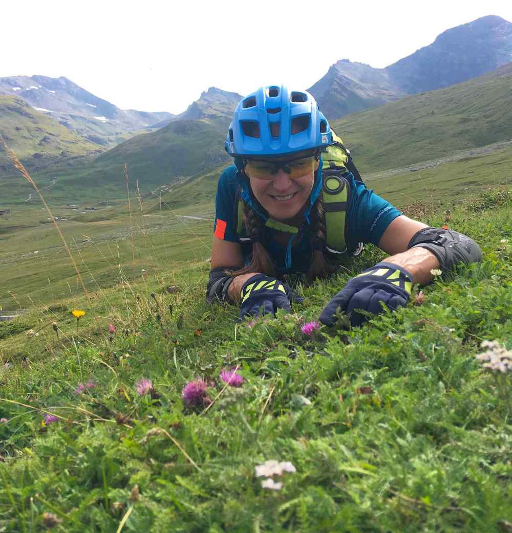 Plant hunting in the French Alps