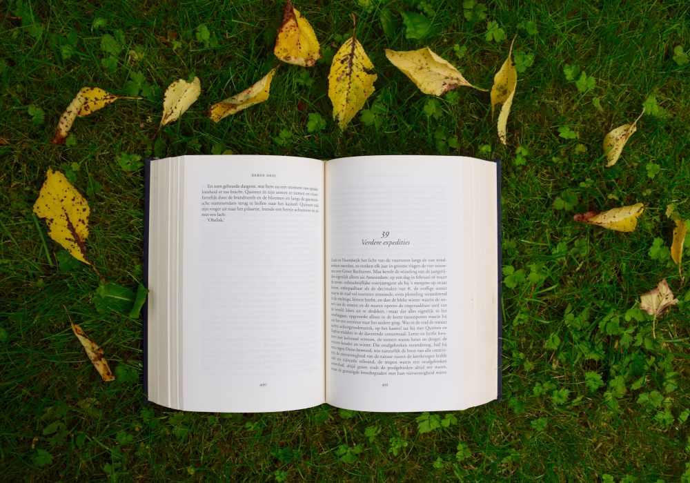 Book on grass
