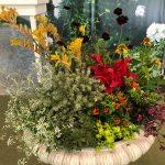 Barakura style gardening