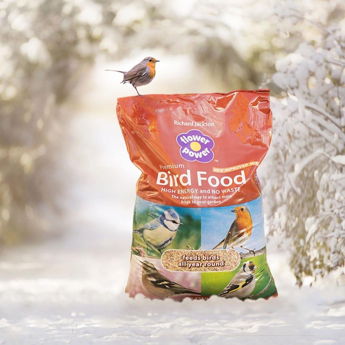 Richard Jackson bird food