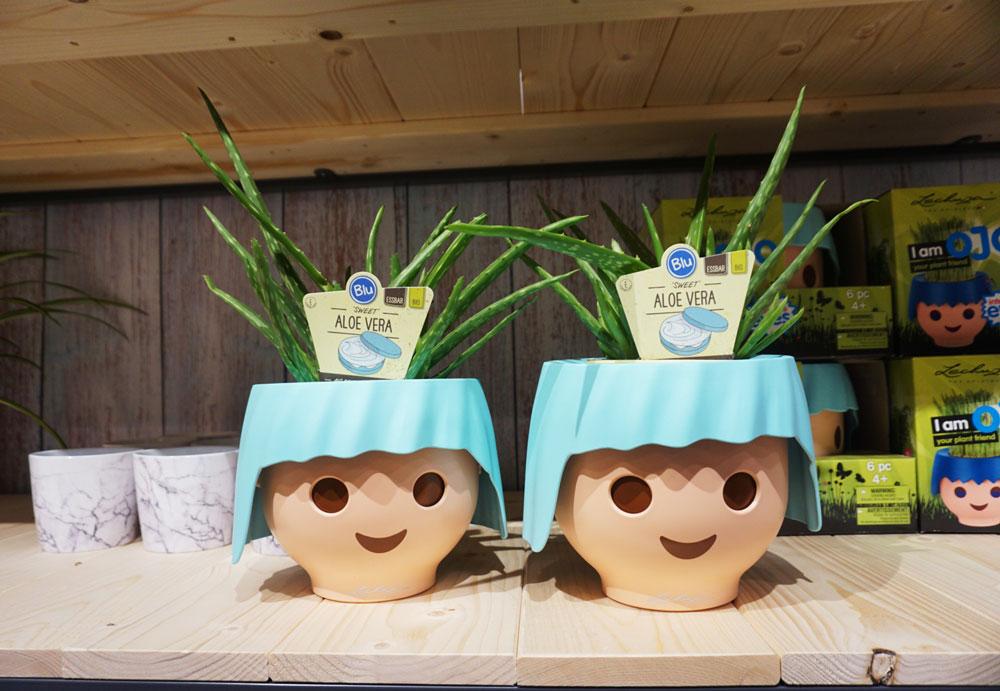 Face plant pots