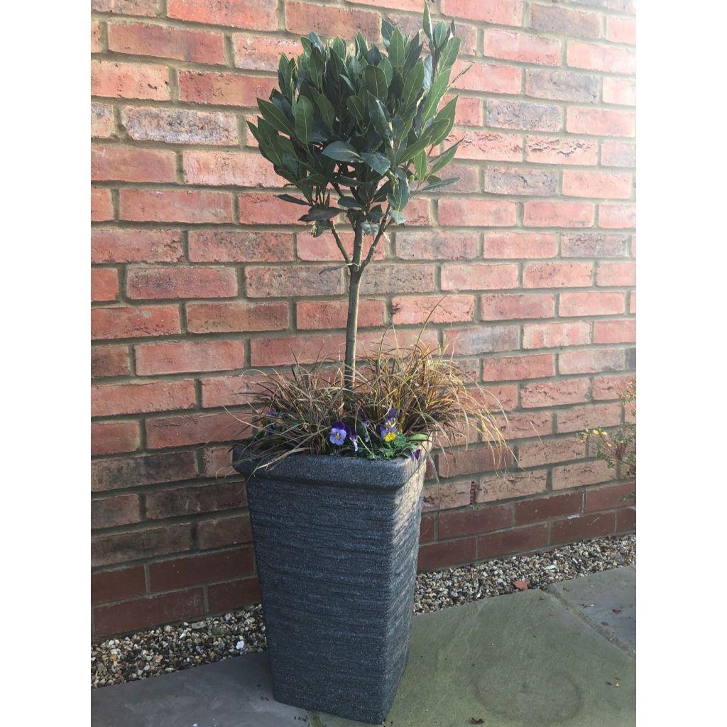 Square slate planters