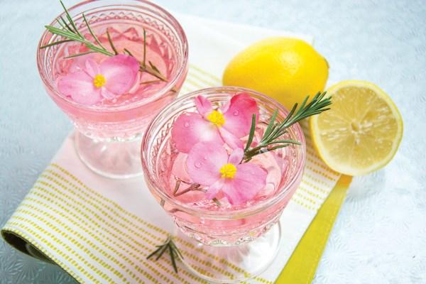 Pink Lady Gin