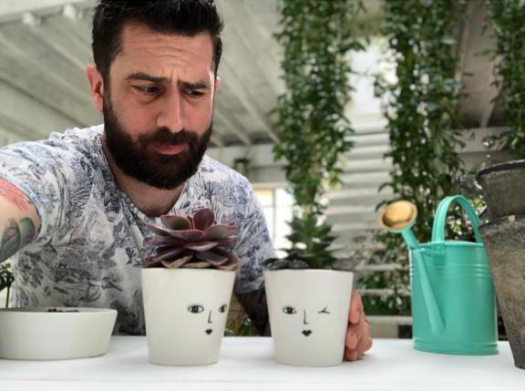 Succulents - Mr Plant Geek