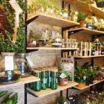 Botanical Norwich