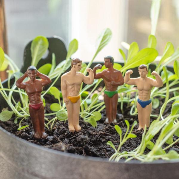 Hunks Mini Planters