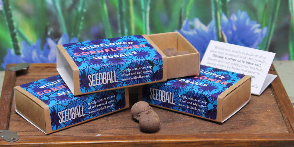 Seedball seed box