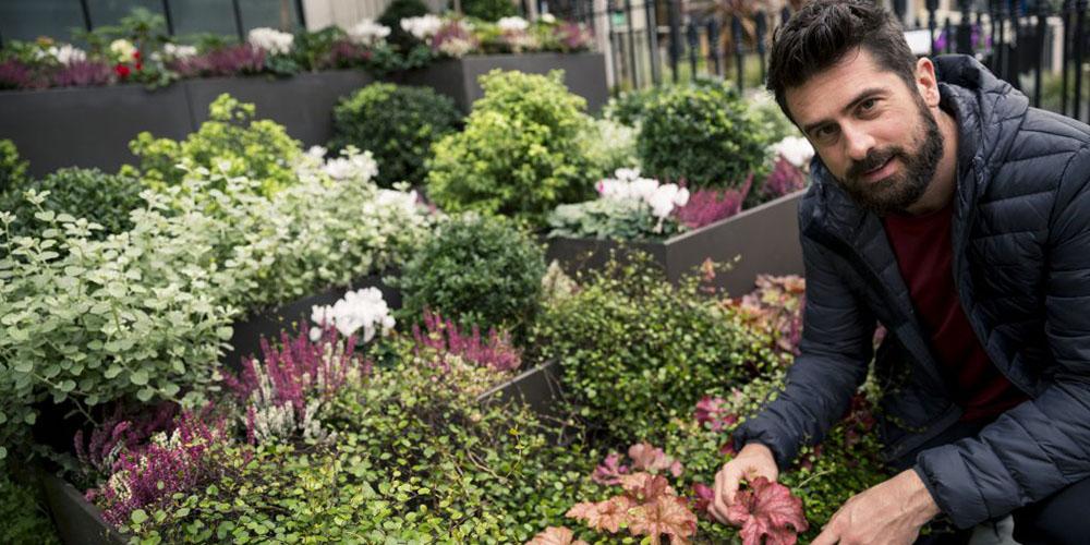 Top 10 Mr Plant Geek articles 2020