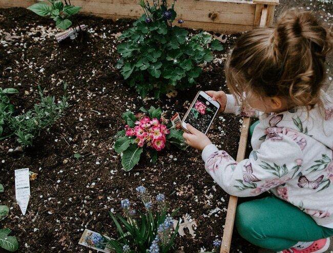 Raising Environmental Awareness in Students Through School Gardens