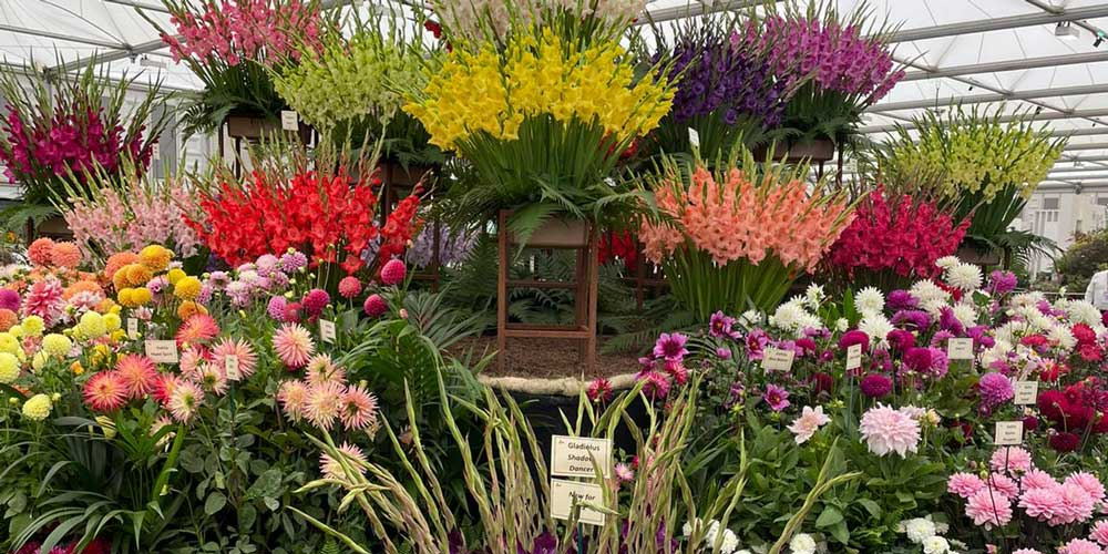 7 plant trends for 2022