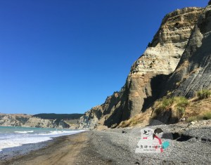 Cape Kidnappers 綁架角