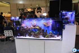 Aquarium avec les éclairages Tunze