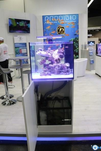 Aquarium marin du stand prodibio