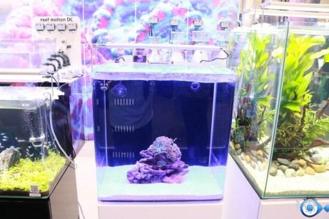 Aquarium nano BLAU