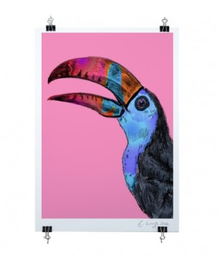 Toucan-pink-on-clips-clear-cut-422x500