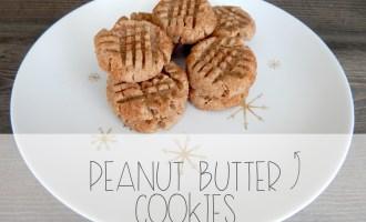 Peanut Butter Cookie | Red Autumn blog