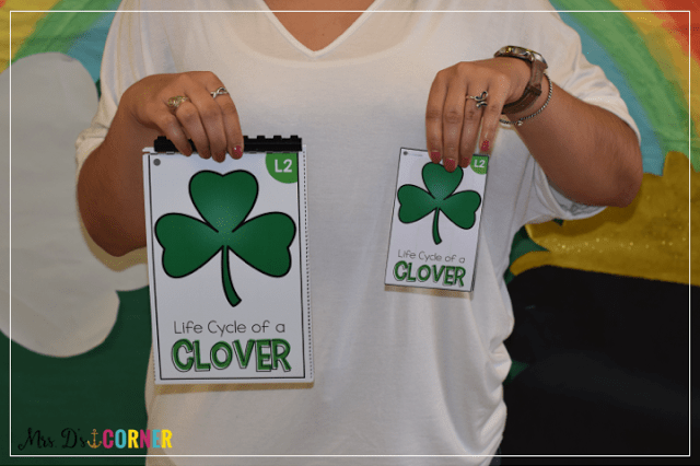 Life cycle of a clover adapted book. Print in full size or in mini size. Only at Mrs. D's Corner.