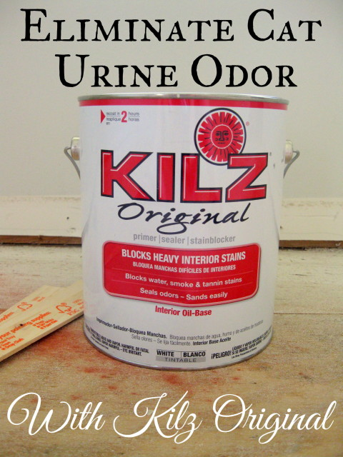 How To Get Rid Of Cat Urine Smell >> Eliminating Cat Urine Odor | A Kilz Original Review - Mrs. Fancee