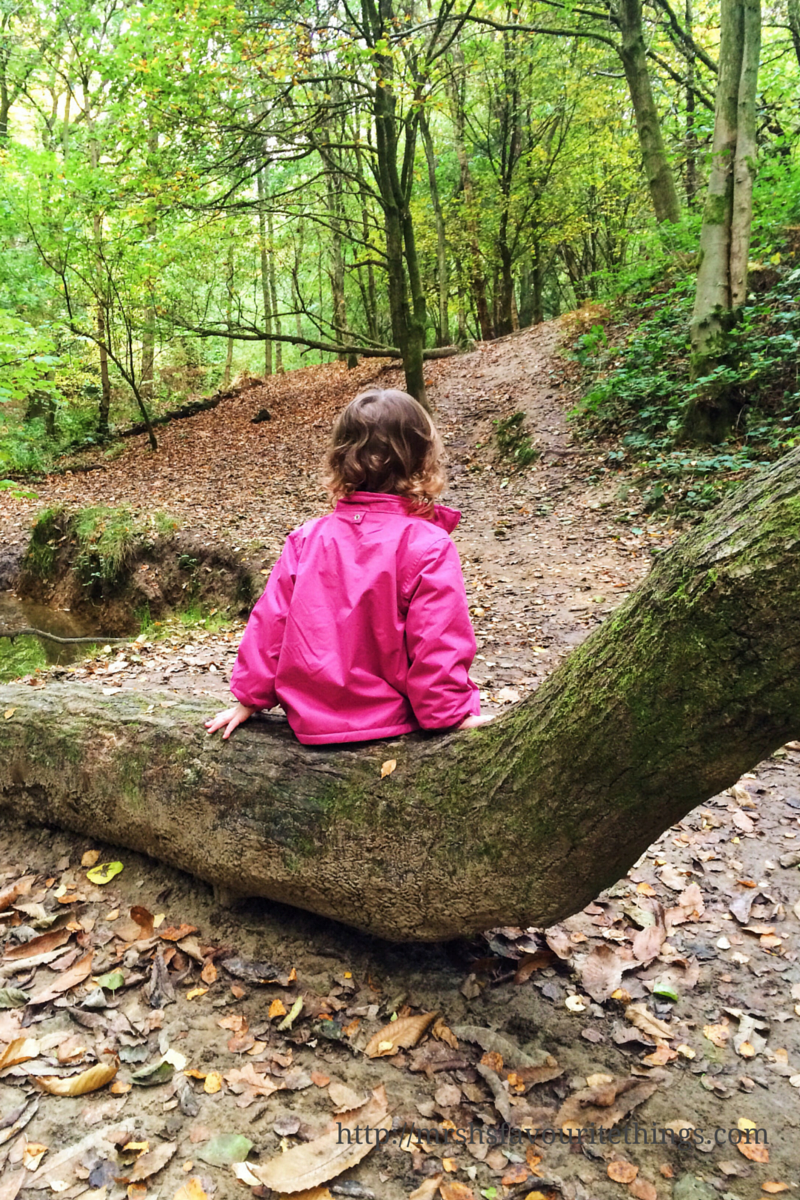 A little girl with brown curly hair sits on a log with her back to the camera. She is in a wood on a sunny Autumn day_photo taken on iPhone_iPhoneography competition with Three_Mrs H's favourite things