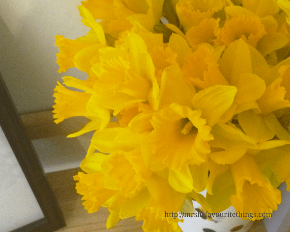 A beautiful bunch of bright yellow daffodils sit in a polka dot vase on a book shelf_Because I'm happy_December 2015 and January 2016_Mrs H's favourite things