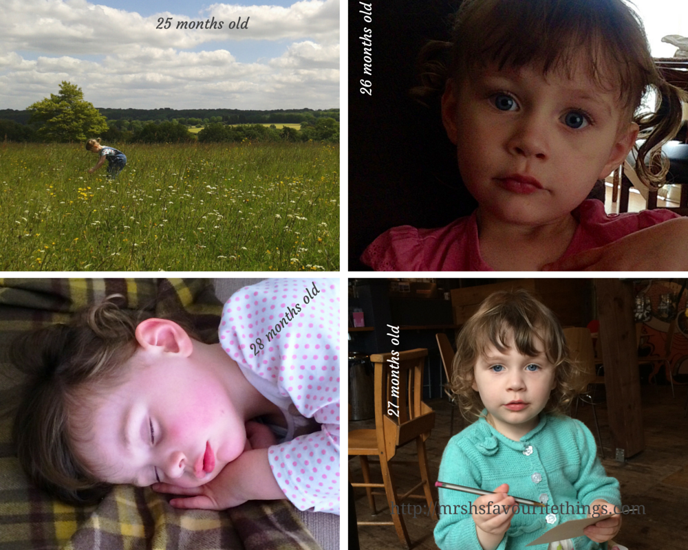 Sharing four photographs of our daughter taken between the ages of 25 months old and 28 months old - Little Miss H at three years old - Mrs H's favourite things